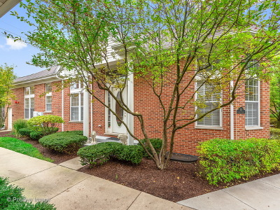 Clarendon Hills Condo/Townhouse For Sale: 408 Commons Circle