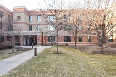 Highland Park Condo/Townhouse New: 891 Central Avenue #309