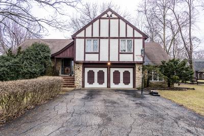 Bensenville Single Family Home For Sale: 4n650 Hawthorne Avenue