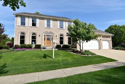 Batavia Single Family Home For Sale: 1355 Challenge Road