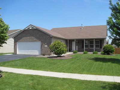 Joliet Single Family Home New: 1206 Raintree Court