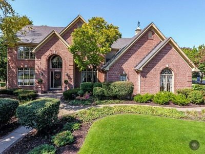 Naperville Single Family Home For Sale: 4403 Clearwater Lane