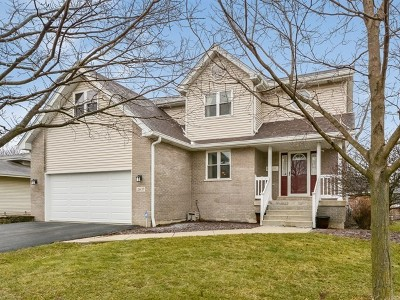 New Lenox Single Family Home New: 2407 Jackson Branch Drive