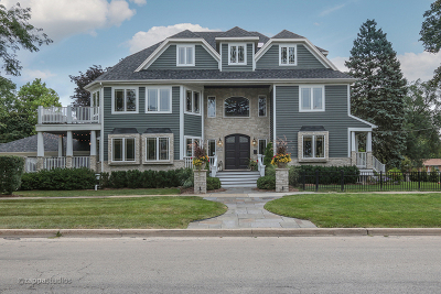Wheaton Single Family Home New: 207 North Ellis Avenue