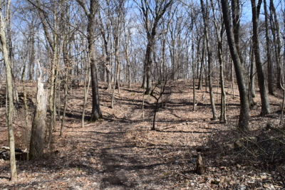 Algonquin Residential Lots & Land For Sale: 0000 North River Road