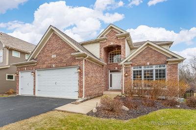 Glen Ellyn Single Family Home New: 365 St. Charles Road