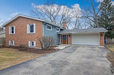 Winfield Single Family Home New: 0s381 Florida Lane