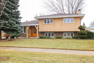 Wood Dale Single Family Home For Sale: 590 Irmen Drive