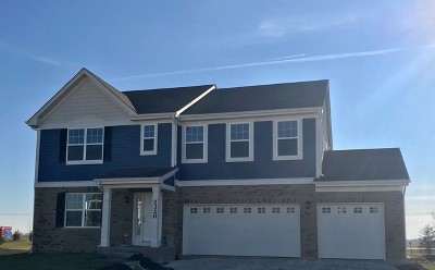 New Lenox IL Single Family Home New: $325,990