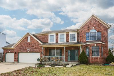 Oswego Single Family Home For Sale: 380 Essex Drive