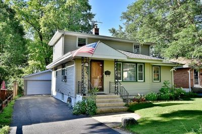 Villa Park Single Family Home For Sale: 129 East Adams Street