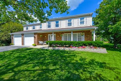 Barrington Single Family Home For Sale: 101 Tudor Drive