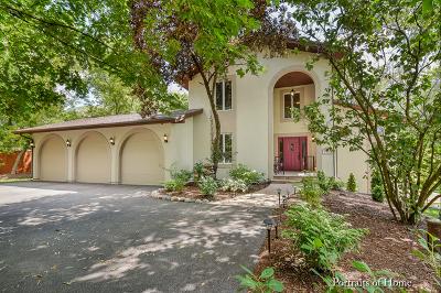 Barrington Single Family Home For Sale: 1207 Prairie Avenue