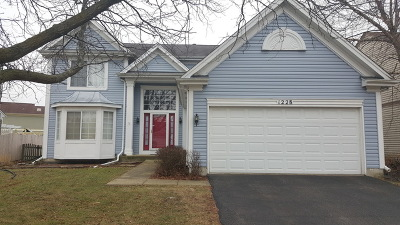 Aurora IL Single Family Home New: $260,000