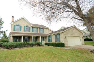 Schaumburg Single Family Home New: 207 Lundy Lane
