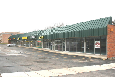 Downers Grove Commercial For Sale: 1530 Ogden Avenue