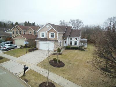 Bloomingdale Single Family Home For Sale: 338 Chesapeake Lane