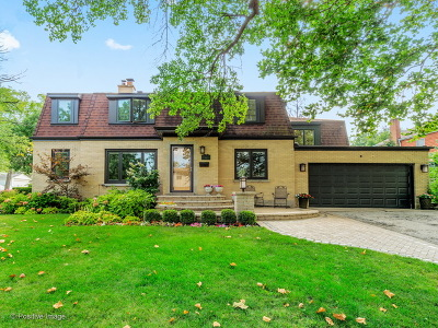 Elmhurst Single Family Home For Sale: 591 South Fern Avenue