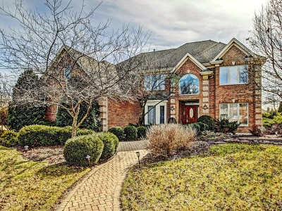 Naperville Single Family Home For Sale: 3812 Royal Portrush Drive
