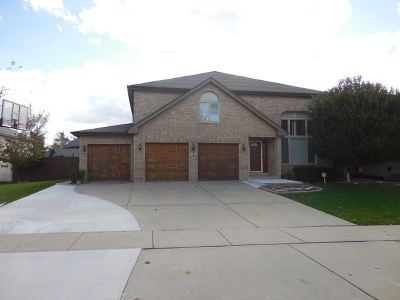 Orland Park Single Family Home For Sale: 10711 Churchill Drive