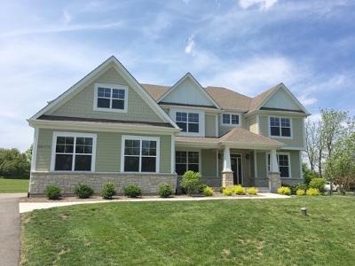Downers Grove Single Family Home For Sale: 5614 Katrine Avenue