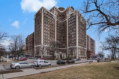 Chicago  Condo/Townhouse For Sale: 5555 South Everett Avenue #12B