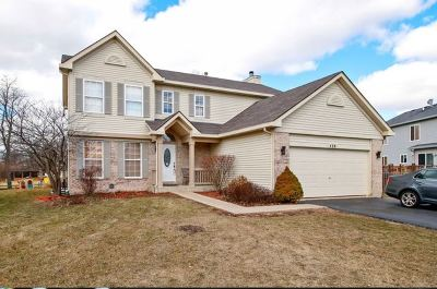 Romeoville Single Family Home For Sale: 428 Rachel Circle
