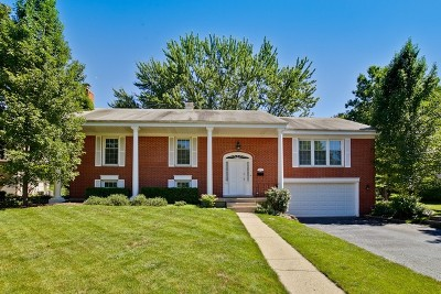 Palatine Single Family Home For Sale: 1083 West Hunting Drive