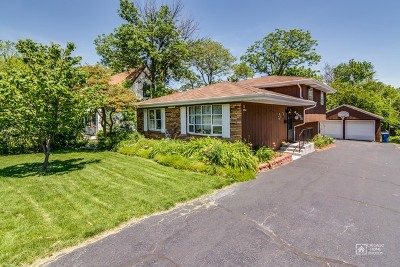 Downers Grove Single Family Home For Sale: 4503 Belmont Road