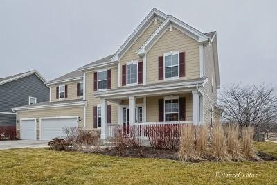 Elgin Single Family Home For Sale: 781 Richwood Avenue