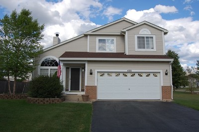 Bolingbrook Single Family Home For Sale: 490 South Orchard Drive
