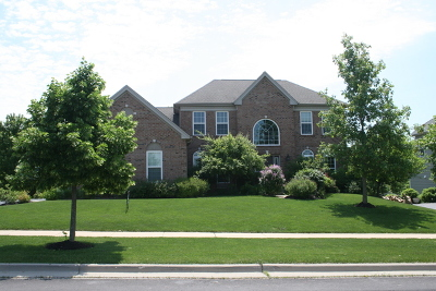 Elgin Single Family Home For Sale: 3547 Tournament Drive