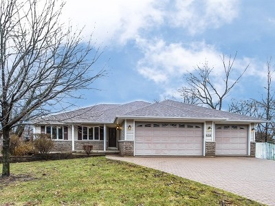 Schaumburg Single Family Home For Sale: 1527 Seward Street
