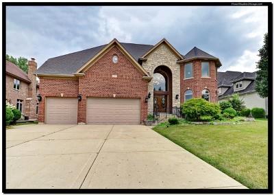 Bloomingdale Single Family Home For Sale: 307 Juliana Lane