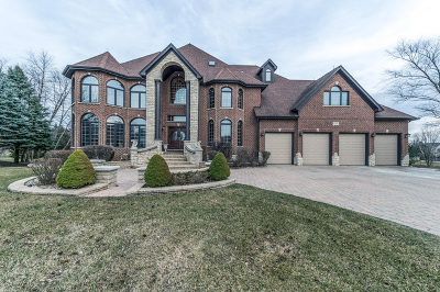 Naperville Single Family Home For Sale: 3804 Royal Dornach Court