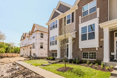 Naperville Condo/Townhouse Price Change: 1114 East Bauer Lot # 12.01 Road