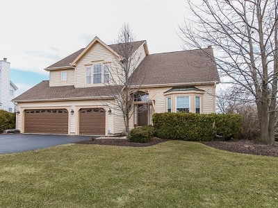 West Dundee Single Family Home For Sale: 817 Wintercrag