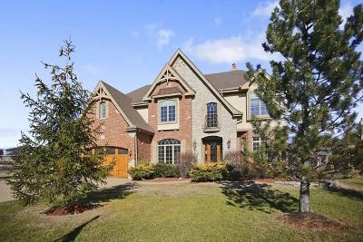 Burr Ridge Single Family Home For Sale: 1150 Secret Forest Drive