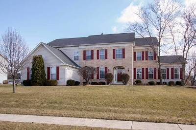 Bartlett Single Family Home For Sale: 1529 Old Forge Road