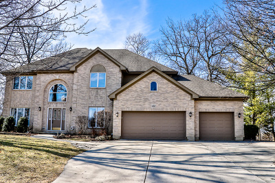 Bartlett Single Family Home For Sale: 352 Timber Ridge Drive