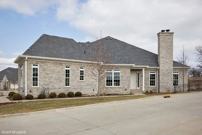 Western Springs Condo/Townhouse For Sale: 6015 Flagg Creek Lane