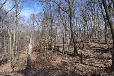 Algonquin Residential Lots & Land For Sale: 000 Riverview Road