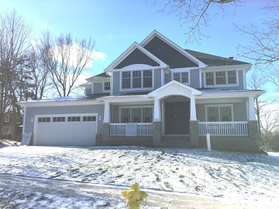 Downers Grove Single Family Home For Sale: 3832 Venard Road