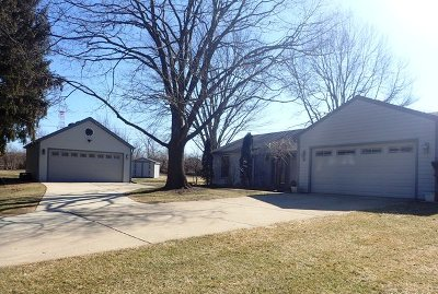Lake Zurich Single Family Home For Sale: 47 Pine Avenue