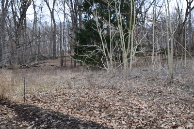 Algonquin Residential Lots & Land For Sale: Lot 1 North River Road North
