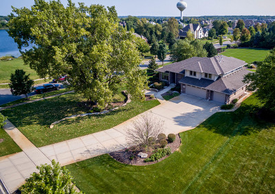 Mokena Single Family Home For Sale: 21333 Saddle Lane