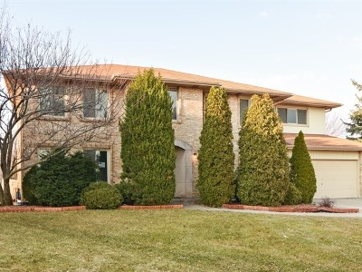 Orland Park Single Family Home For Sale: 8501 Rob Roy Drive