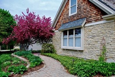 Geneva Single Family Home For Sale: 221 Howard Street