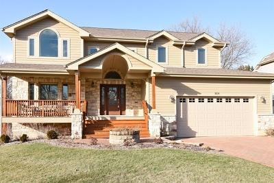 Palatine Single Family Home For Sale: 924 West Ellis Street