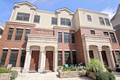 Highland Park Condo/Townhouse For Sale: 853 Laurel Avenue